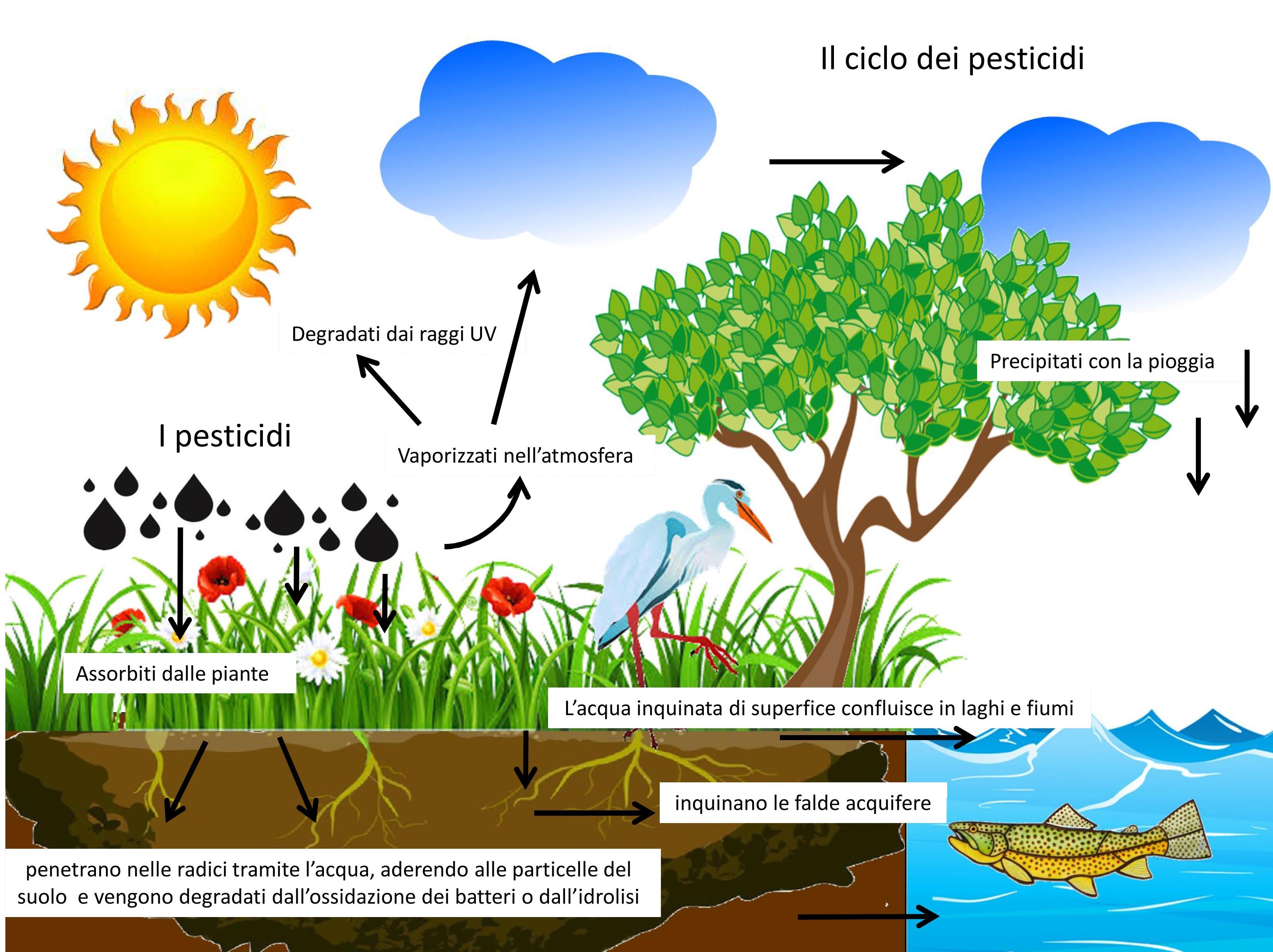 Ispra sonda le acque e trova pesticidi nel 67% dei casi. In Lombardia si sale al 73,1%. Italia prima in Europa per consumo di pesticidi