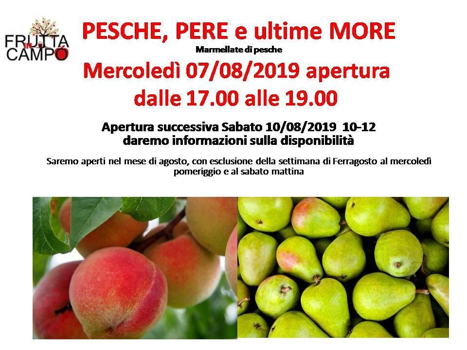 Frutta in Campo 7.8.19
